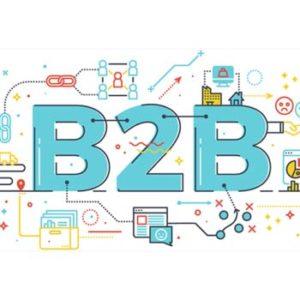 Czym różni się sklep internetowy dla klientów indywidualnych (B2C) od sklepu dla klientów biznesowych (B2B)?